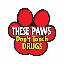 Red ribbon week these paws don't touch drugs