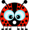 Ladybug big eyes