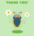 Thank you bug