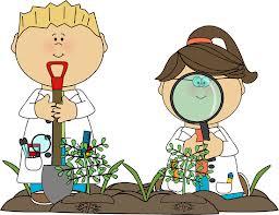 Science lab garden