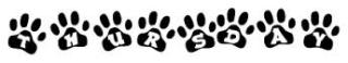 Thursday paws