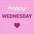 Wednesday happy purple
